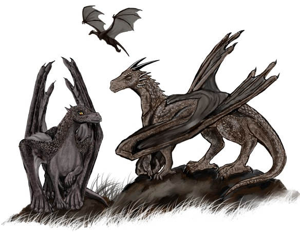 A picture of some dragons by Louisa Watson